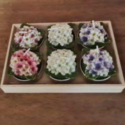 Blüten-Kerzen