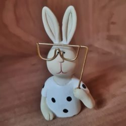 Hase mit Brille