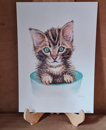 Poster kleines Kätzchen