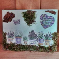 Lavendel-DIY - Bild