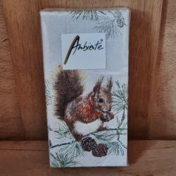 Eichhörnchen Taschentücher